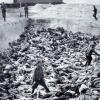 """پارلمان اروپا از ترکیه خواست """"نسلکشی"""" ارامنه را به رسمیت بشناسد"""