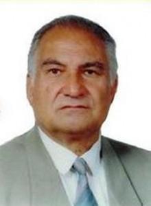 مهندس رضا کرمانی
